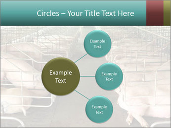 0000076079 PowerPoint Template - Slide 79