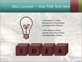 0000076079 PowerPoint Template - Slide 80