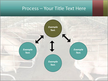 0000076079 PowerPoint Template - Slide 91