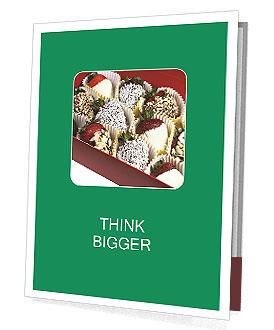 0000076091 Presentation Folder