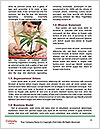 0000076091 Word Templates - Page 4