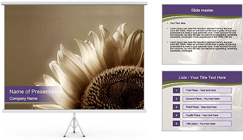 0000076096 PowerPoint Template