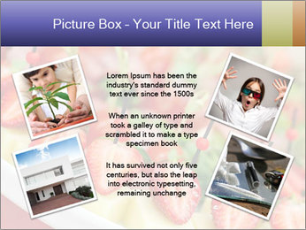0000076100 PowerPoint Templates - Slide 24