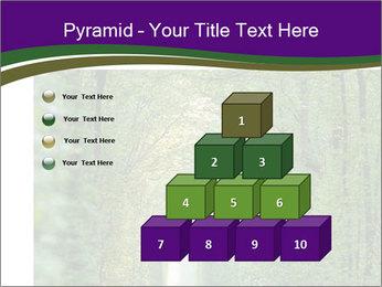 0000076102 PowerPoint Templates - Slide 31