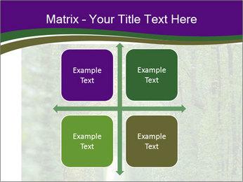 0000076102 PowerPoint Templates - Slide 37