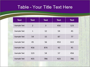 0000076102 PowerPoint Templates - Slide 55