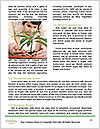0000076106 Word Templates - Page 4