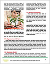 0000076114 Word Templates - Page 4
