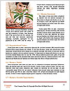 0000076130 Word Templates - Page 4
