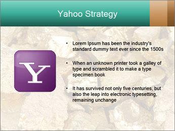 0000076136 PowerPoint Templates - Slide 11