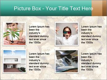 0000076136 PowerPoint Templates - Slide 14