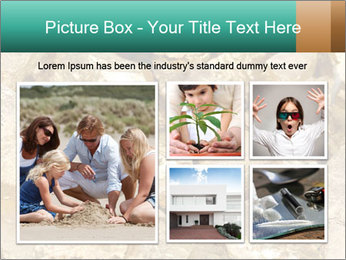 0000076136 PowerPoint Template - Slide 19