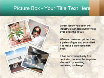 0000076136 PowerPoint Template - Slide 23