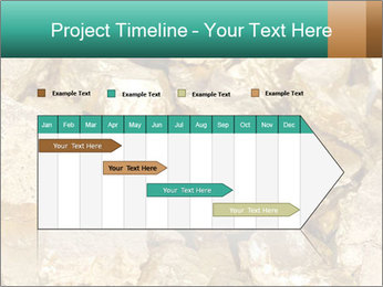 0000076136 PowerPoint Templates - Slide 25