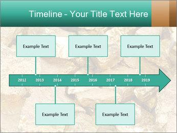 0000076136 PowerPoint Templates - Slide 28