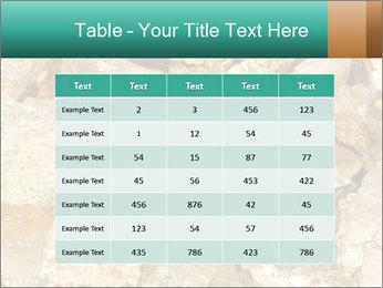 0000076136 PowerPoint Templates - Slide 55
