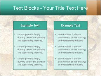 0000076136 PowerPoint Templates - Slide 57
