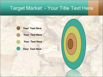 0000076136 PowerPoint Templates - Slide 84