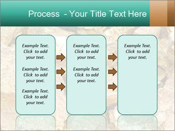 0000076136 PowerPoint Templates - Slide 86