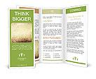 0000076139 Brochure Template