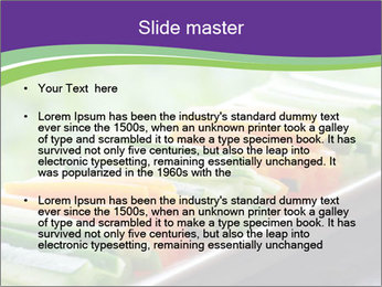 0000076142 PowerPoint Templates - Slide 2
