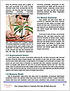 0000076146 Word Templates - Page 4