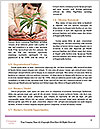 0000076149 Word Templates - Page 4