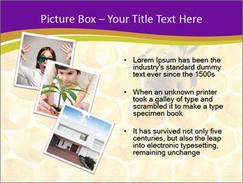 0000076150 PowerPoint Template - Slide 17