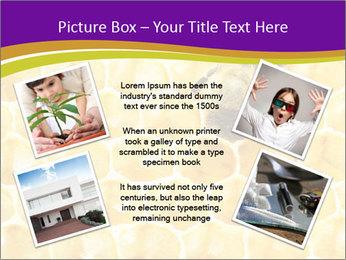 0000076150 PowerPoint Template - Slide 24