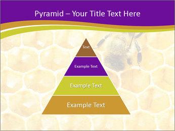 0000076150 PowerPoint Template - Slide 30