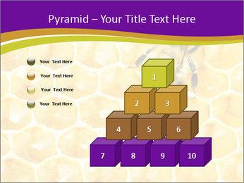 0000076150 PowerPoint Template - Slide 31