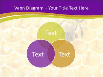 0000076150 PowerPoint Template - Slide 33