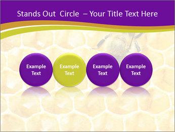 0000076150 PowerPoint Template - Slide 76