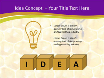 0000076150 PowerPoint Template - Slide 80