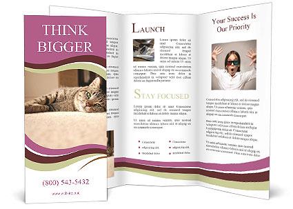 0000076155 Brochure Templates