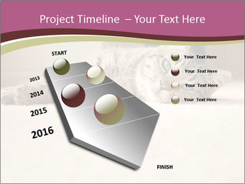 0000076155 PowerPoint Template - Slide 26
