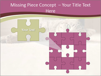 0000076155 PowerPoint Template - Slide 45