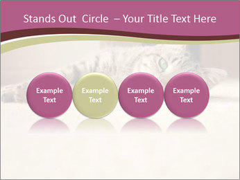 0000076155 PowerPoint Template - Slide 76
