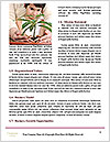 0000076155 Word Templates - Page 4