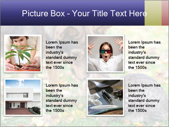 0000076156 PowerPoint Template - Slide 14