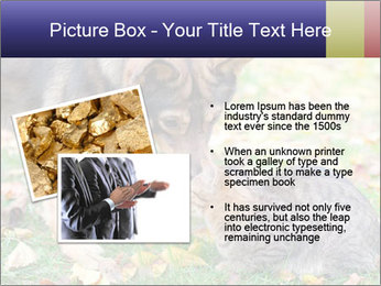 0000076156 PowerPoint Template - Slide 20