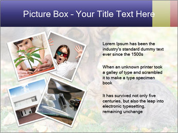 0000076156 PowerPoint Template - Slide 23