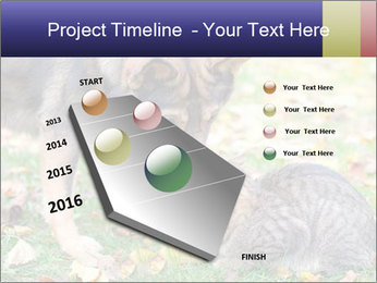 0000076156 PowerPoint Template - Slide 26