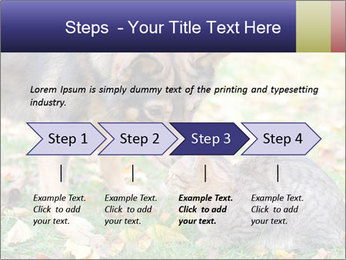 0000076156 PowerPoint Template - Slide 4