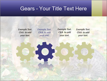 0000076156 PowerPoint Template - Slide 48