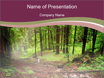 0000076161 PowerPoint Template - Slide 1