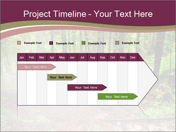 0000076161 PowerPoint Templates - Slide 25