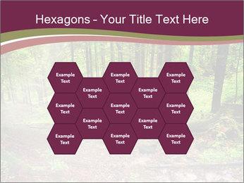 0000076161 PowerPoint Templates - Slide 44