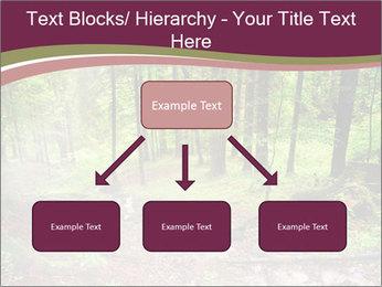 0000076161 PowerPoint Templates - Slide 69