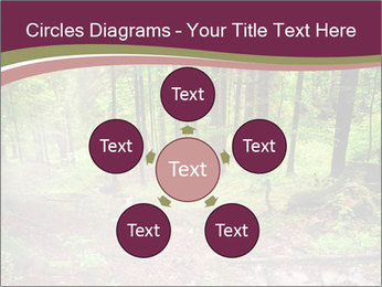 0000076161 PowerPoint Templates - Slide 78